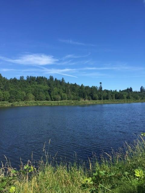 carlisle lake