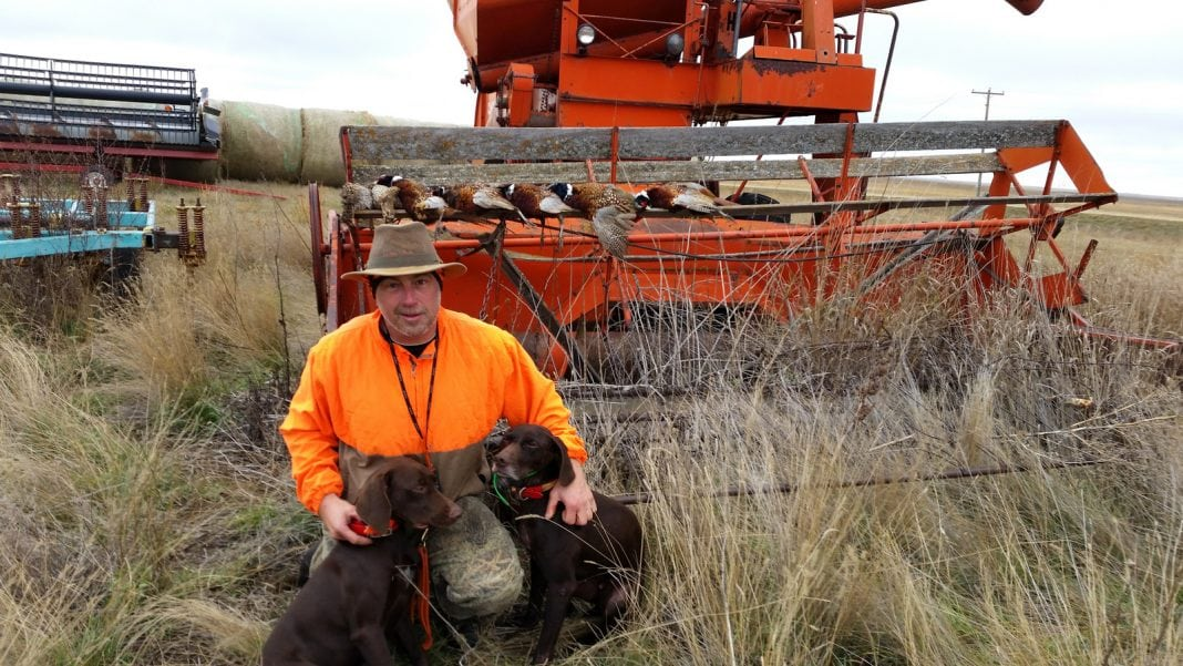 Dwayne with hunting dogs