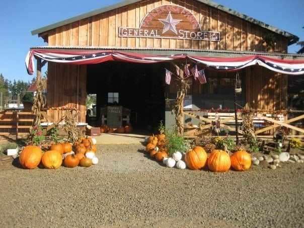 Parkerosa Pumpkin Patch