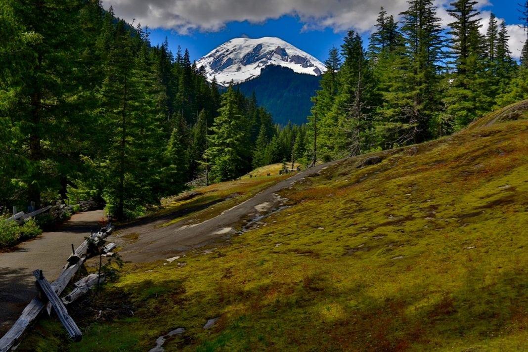 Box Canyon Mt Rainier
