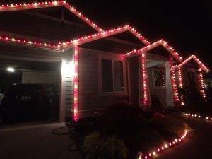 Calypso Christmas Lights