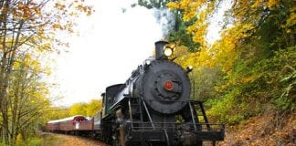 Steam Train Chehalis-Centralia Railroad
