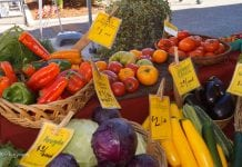 Farmers Market of Chehalis