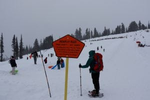 Mount Rainier Sledding