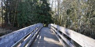 Bridge at Schaeffer Park