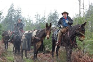 Lewis County Back Country Horsemen