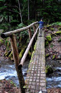 Covel Falls Hike