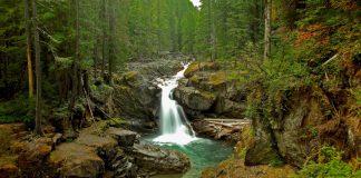 Silver Falls Washington