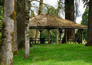 Fort Borst Park Picnics