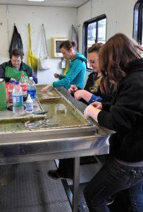 Cowlitz Salmon Hatchery