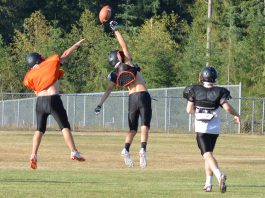 napavine football