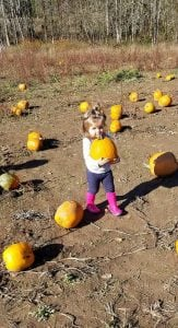 Lewis County pumpkin patches