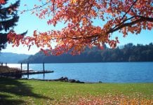 Lewis County fall walks