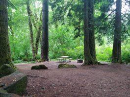 Winston Creek Campground