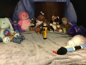 Stuffed Animal Sleepover @ Vernetta Smith Chehalis Timberland Library