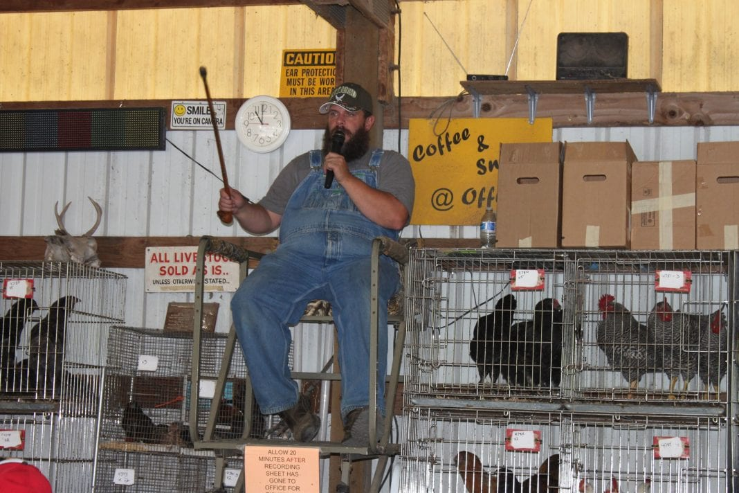 Coal Creek Poultry Auction Chehalis