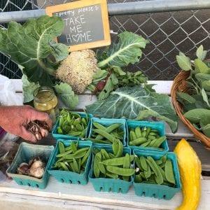 Winlock Community Garden