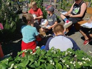 Toledo Elementary Kid's Garden