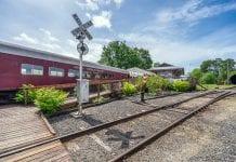 Chehalis Centraila Scenic Railroad Dinner
