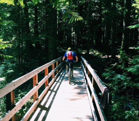 Packwood Trail Project