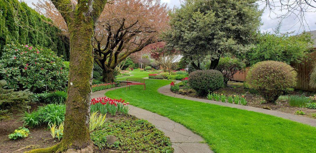 Mossyrock Garden