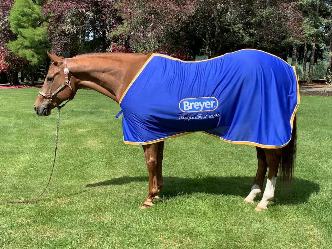 Checkers Breyer Horse
