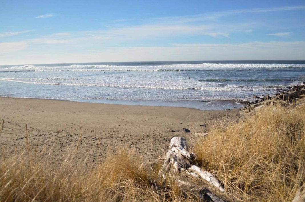 Grays Harbor Beach