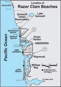 Grays Harbor Razor Clams