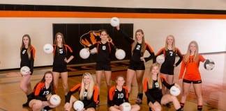 napavine volleyball