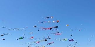 Grays Harbor kite